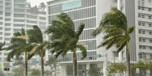 Tips To Protect Your Miami Business From A Hurricane