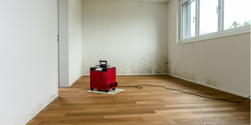 How to Remove Humidity from a Room